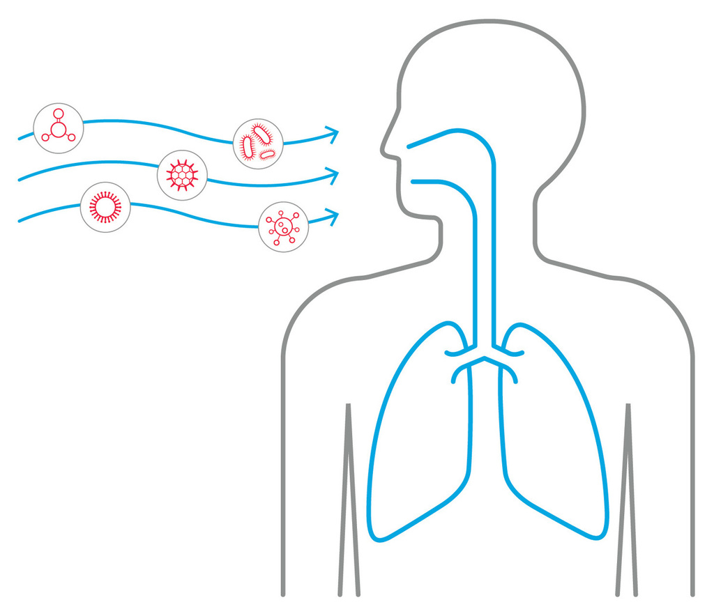 Xl respiratory illustration1 01